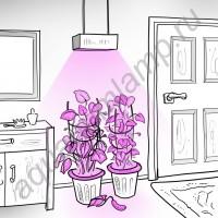 """Лампа для освещения оранжереи с мощным линзованым* фито светодиодом 50 Вт """"Капелла"""""""